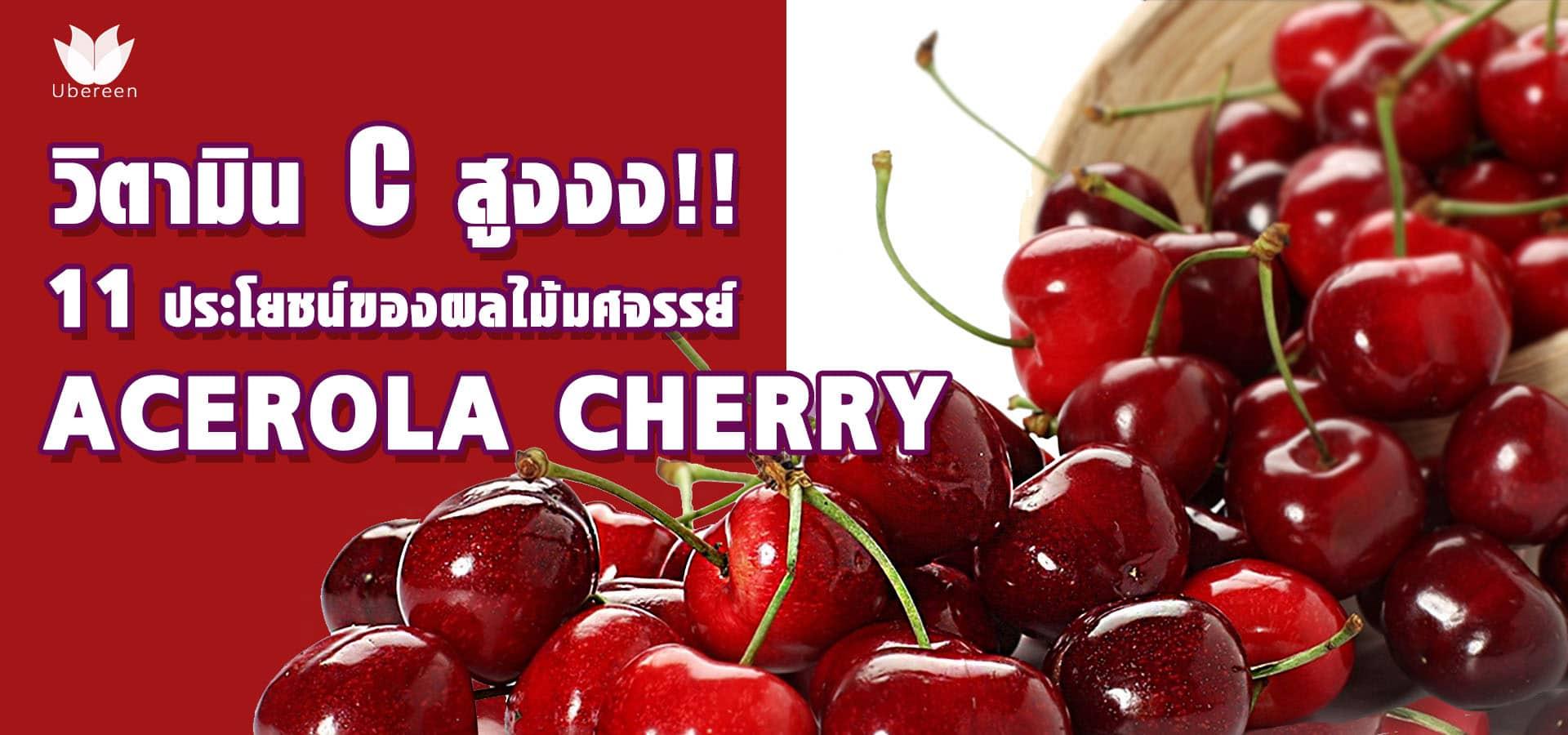 acerola cherry อเซโรล่าเชอร์รี่ header